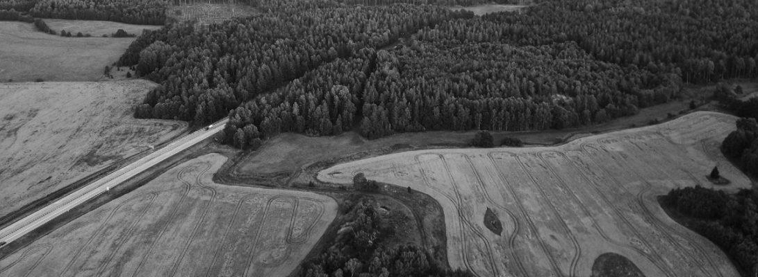 agricultural landscape with remnant native vegetation