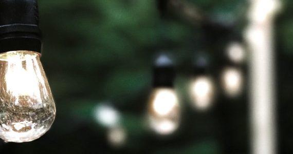 light bulb in the garden