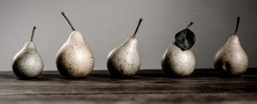 pears lined up on the counter